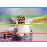 【C言語】マルチスレッドで画像の拡大縮小を高速化