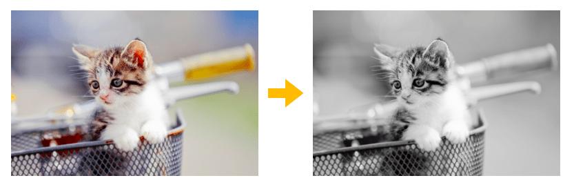 カラー画像からモノクロ画像に変換するイメージ