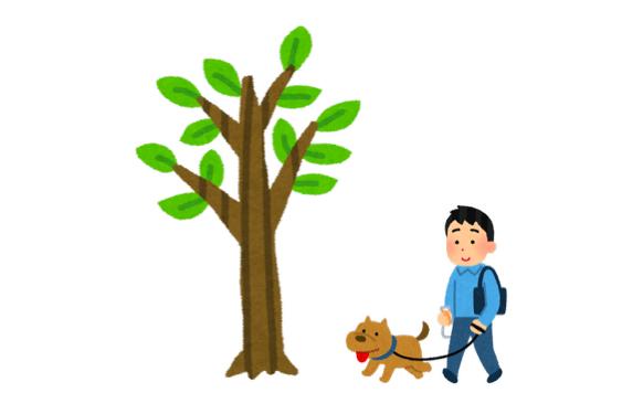 木構造を木でたとえた図