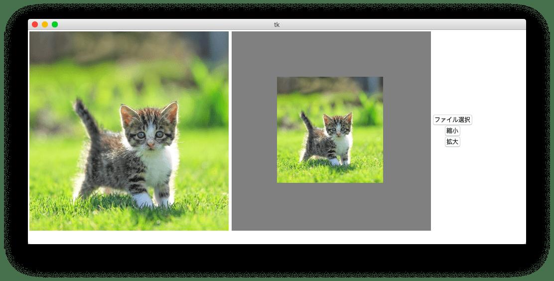 縮小後の画像をアプリに表示した結果