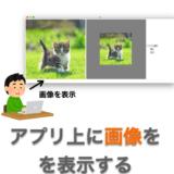 【Python】Tkinter のみで GUI アプリに画像を表示する