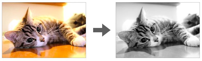 画像のモノクロ化