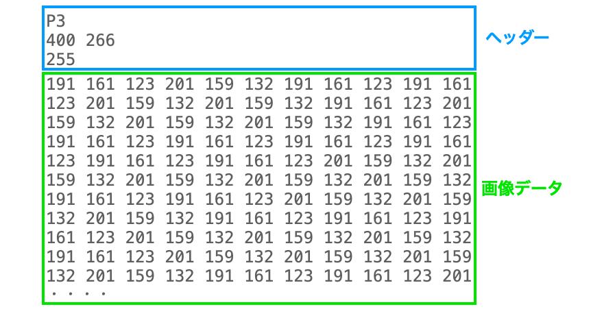 PNMのデータ構造