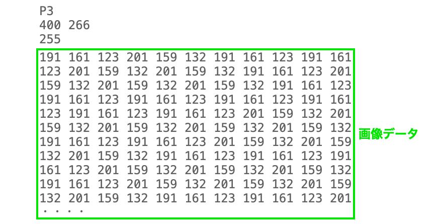 PNMの画像データ