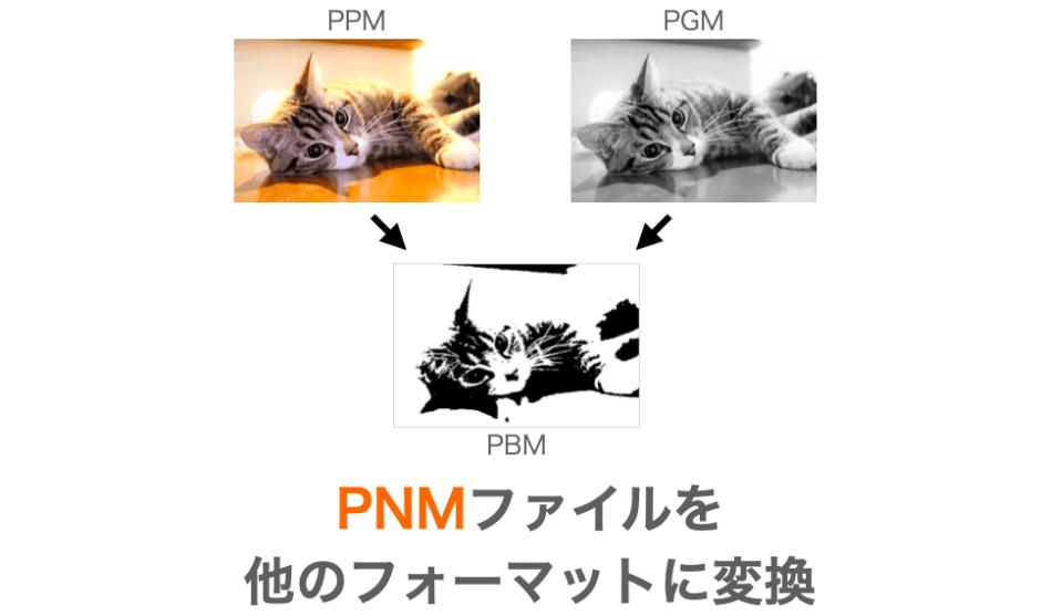 PNMフォーマット相互変換のプログラム紹介ページアイキャッチ