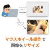 【Python/tkinter】マウスホイールで画像のリサイズを行う