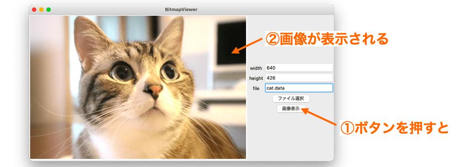 画像表示ボタンで指定した画像が指定したサイズで表示される様子