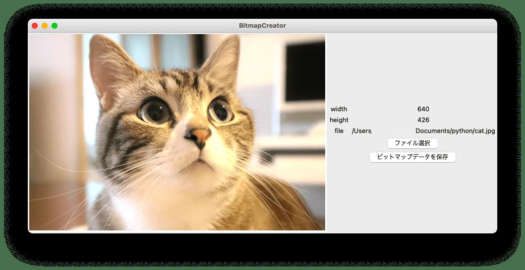 アプリに選択した画像が表示される様子